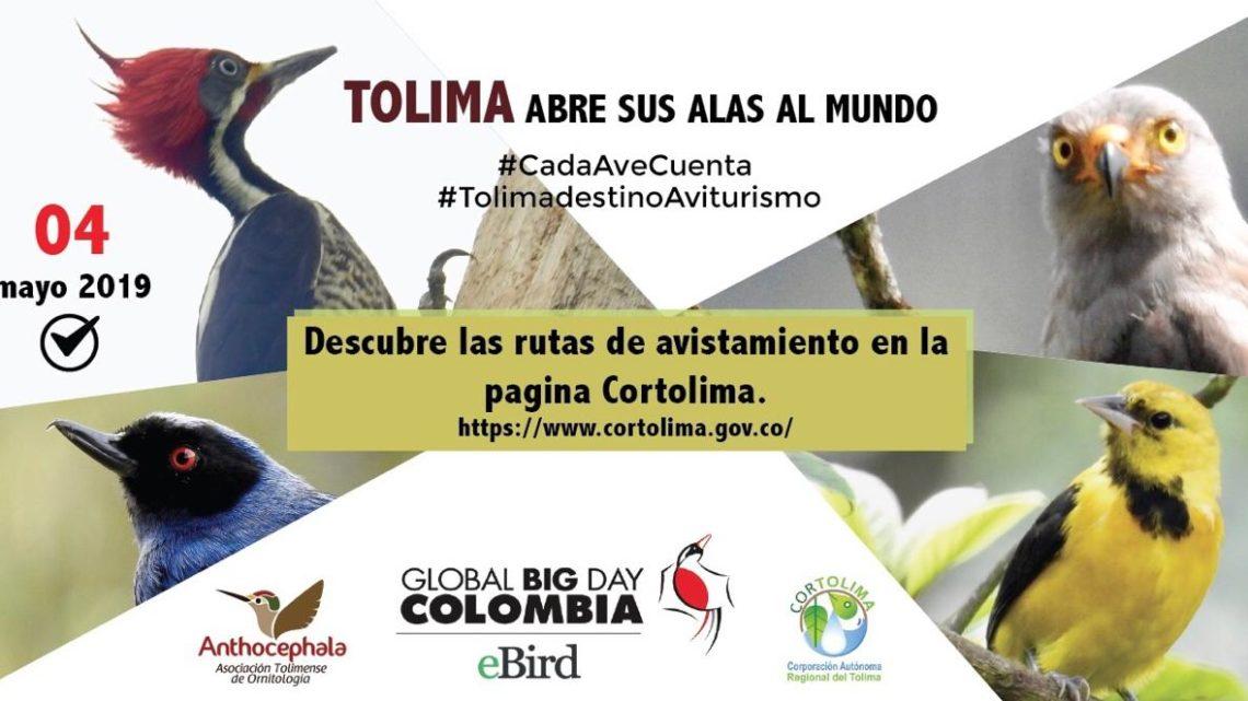 El Tolima ya tiene listas 75 rutas de avistamiento de aves para el Global Big Day