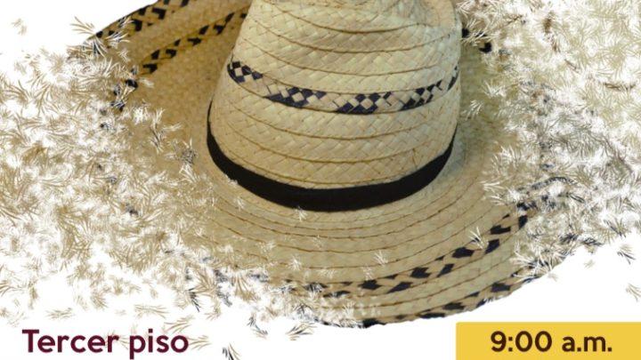 Sombreros Tolimenses elaborados por artesanos Tolimenses