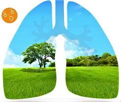 Día Interamericano de calidad del aire