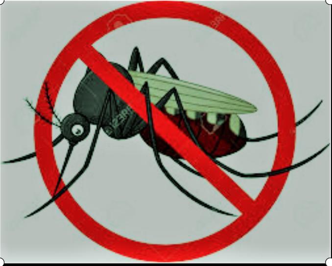 Campañas para prevenir enfermedades transmitidas por mosquitos