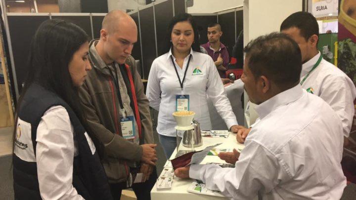 Ocho marcas del Tolima estarán  en Cafés de Colombia Expo 2019
