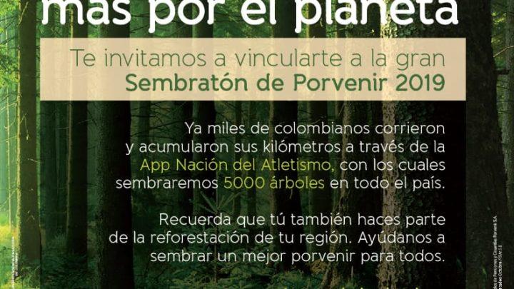 Porvenir realiza  Sembratón de árboles en Ibagué