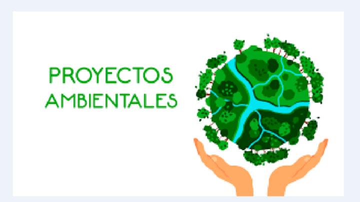Cortolima propone a gobernación y alcaldías cofinanciar proyectos verdes