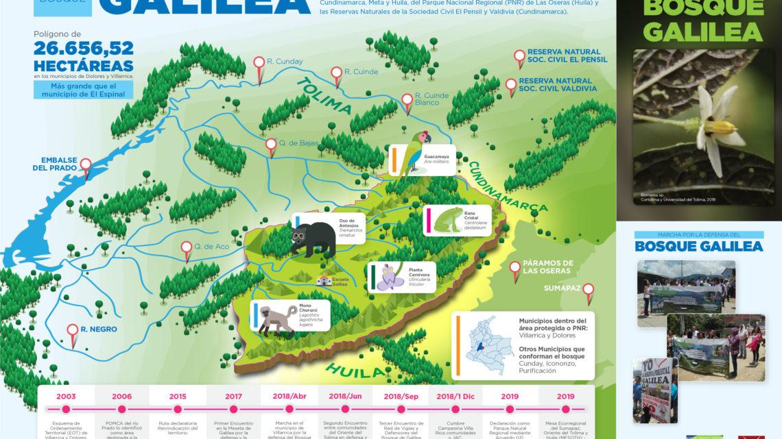 Urge plan de manejo ambiental para proteger el Bosque de Galilea