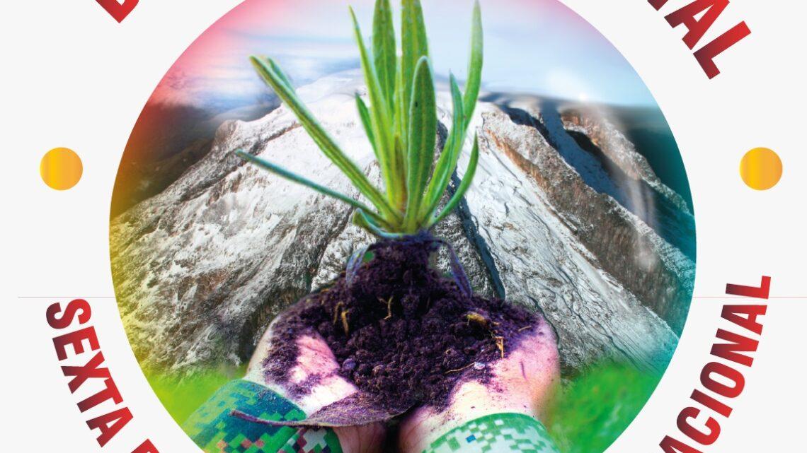 Las campaña Siembra Vida y Burbuja Ambiental que busca la siembra de 1 millón de especies y 8 mil frailejones