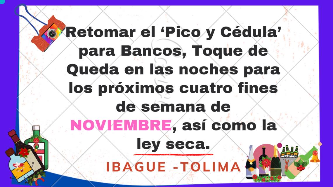Tolima: Conozca las nuevas medidas que Ibagué adoptaría para disminuir la curva de Covid-19