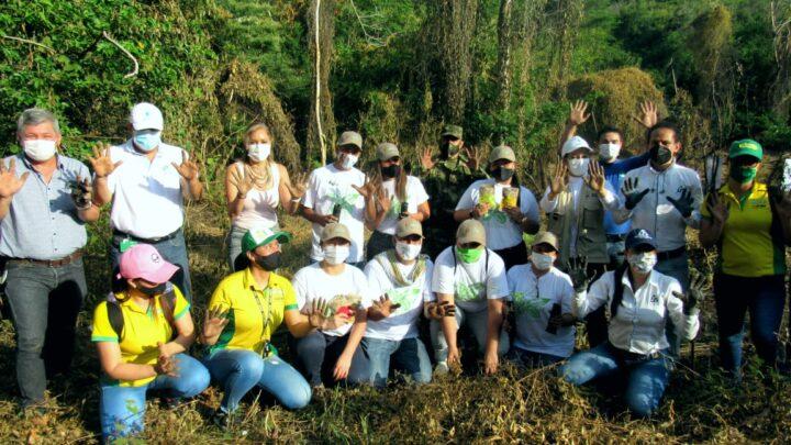 Ejército Nacional y Cortolima sembraron mil  árboles de Iguá en Alvarado