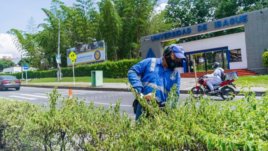 Turista: 704 parques de Ibagué serán embellecidos en noviembre