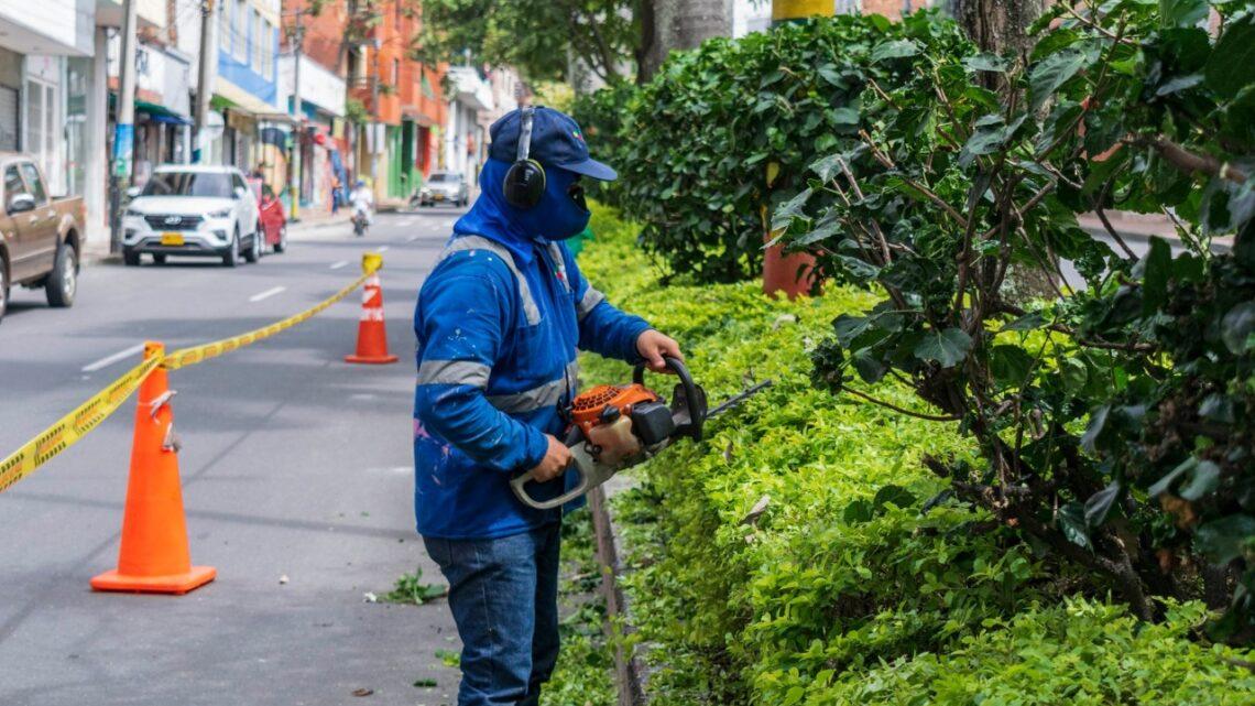 Turistas Ibague realiza embellecimiento en parques y zonas verdes de Ibagué
