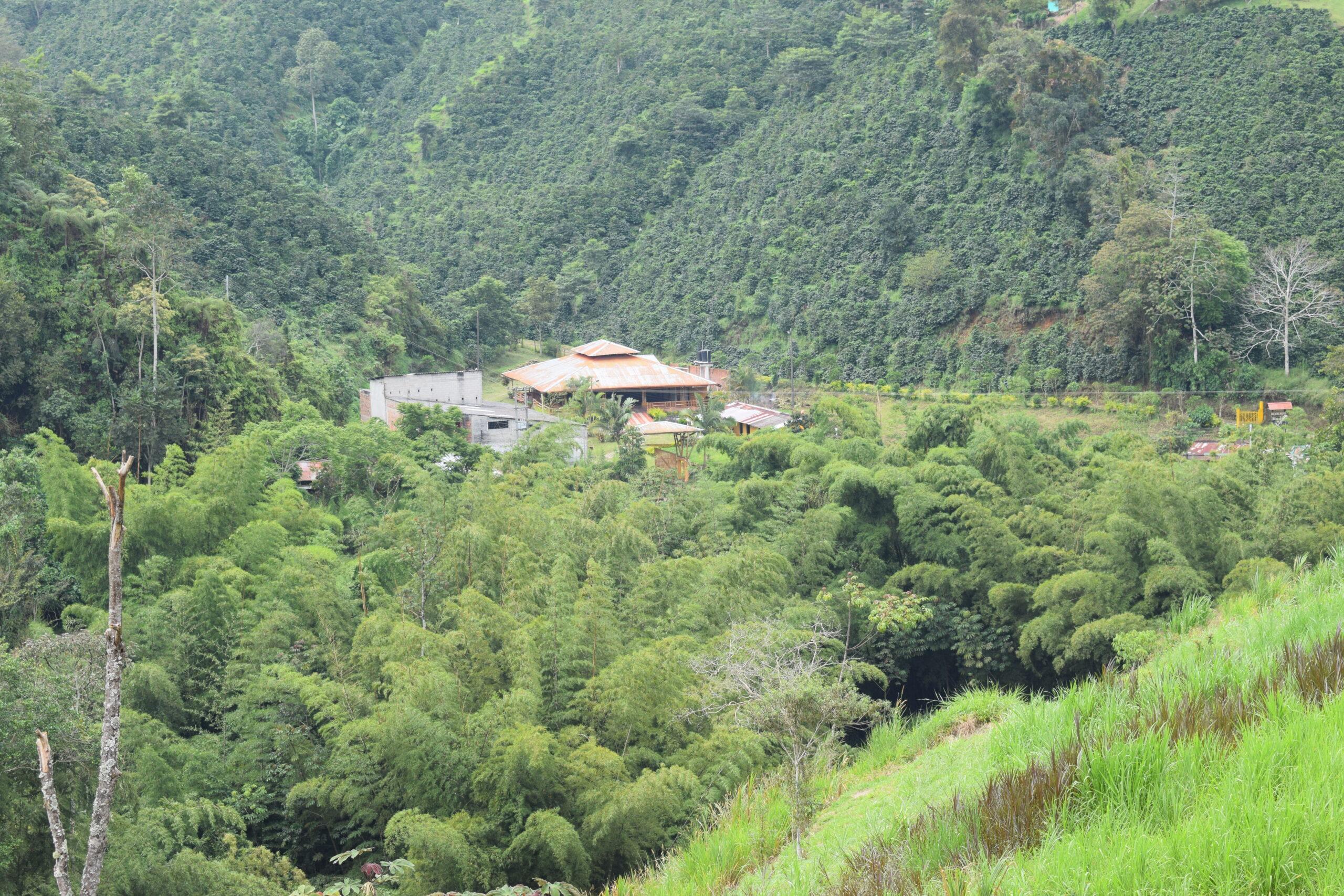 Turistas: ALIANZA CON TOLIMA, UNA  OPORTUNIDAD PARA EL MEJORAMIENTO DE LA COMPETITIVIDAD DE LA REGIÓN
