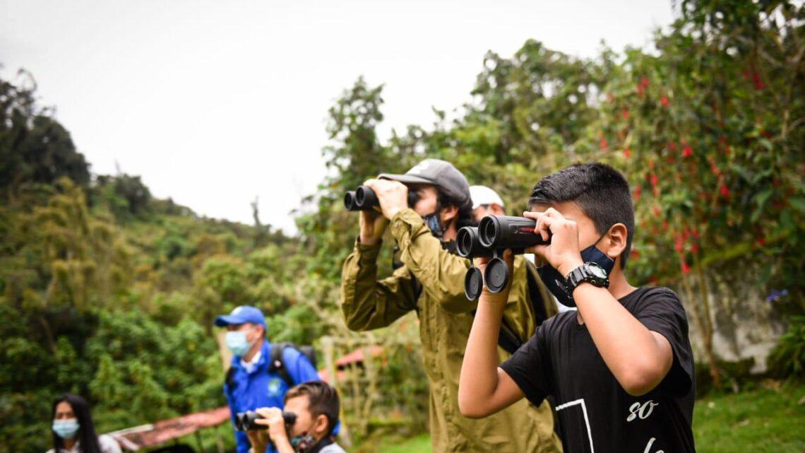 Turistas: Tolima, destino de aves migratorias