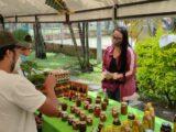¡Alístese para la jornada de Mercados Campesinos en el parque Macadamia del barrio Parrales!