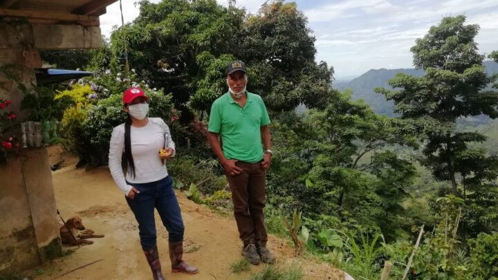 Turistas: Rioblanco, Tolima Tolima invierten 3.800 millones en la producción de café orgánico