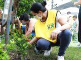 260 personas avanzan en el embellecimiento de los barrios de Ibagué