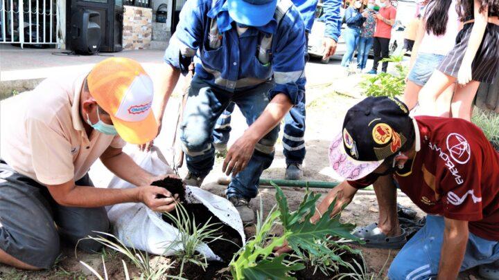 Turistas: Ibague embellecer los barrios.