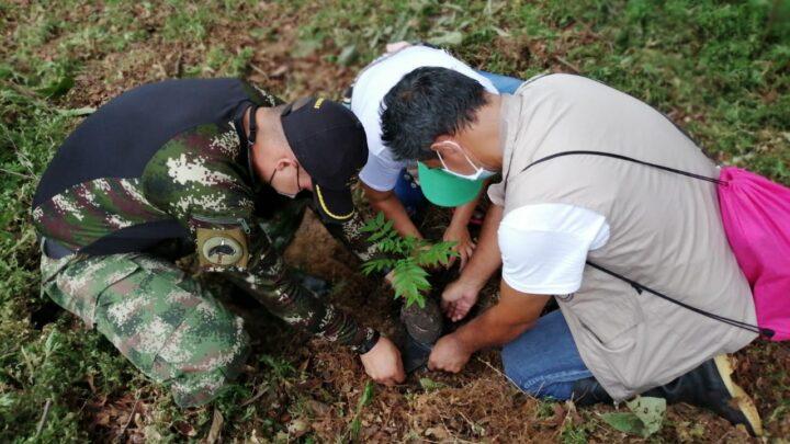 GRANDES PERSONALIDADES AMBIENTALES SE SIGUEN SUMANDO A LA SIEMBRA DE ÁRBOLES POR LA RECUPERACIÓN DEL AMAZONAS