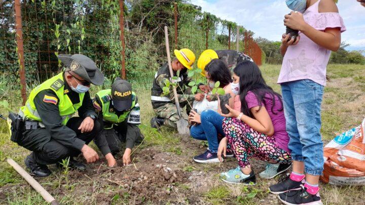 Turistas: PLANTA UN ÁRBOL 'UN BOSQUE PARA AMÉRICA'
